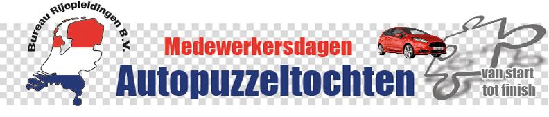 BRO-puzzel-logo-web
